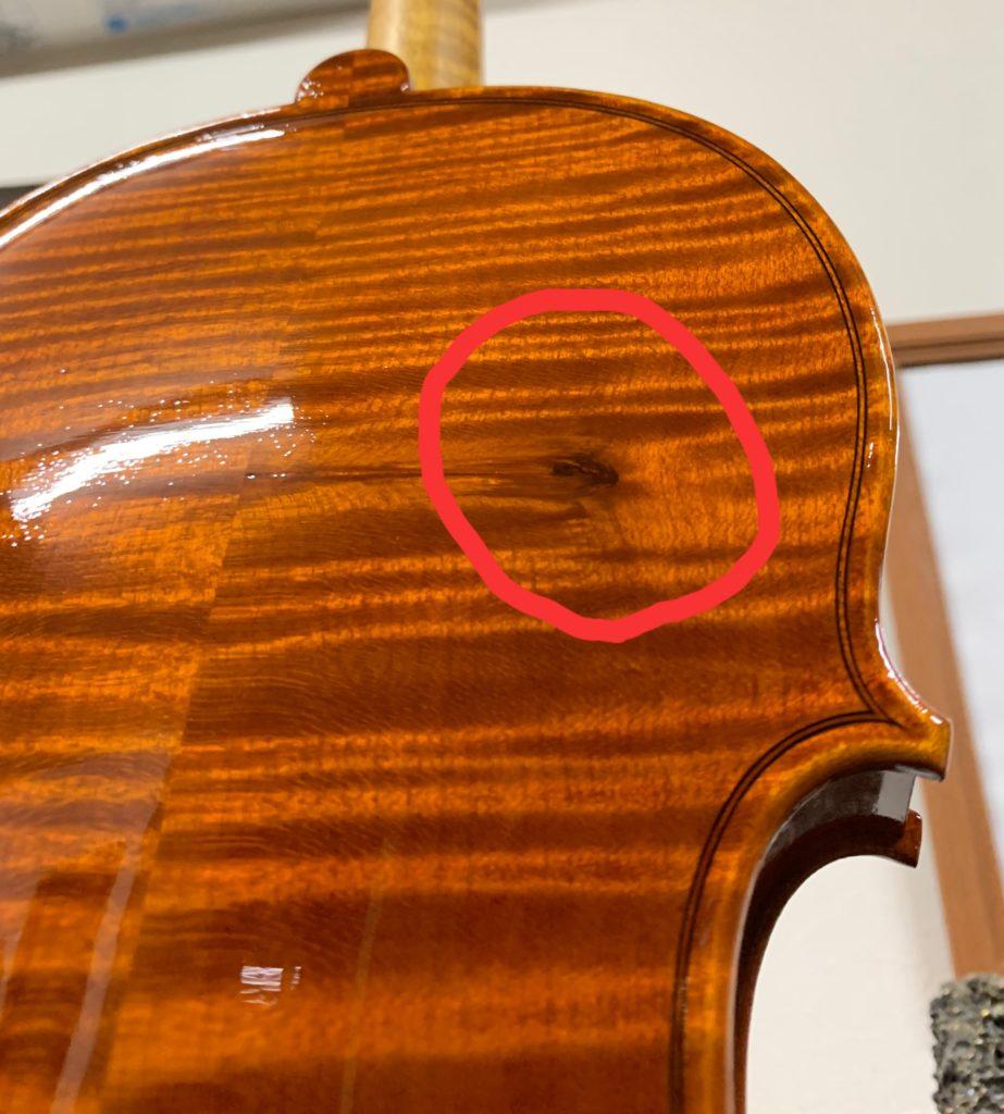 バイオリンの節